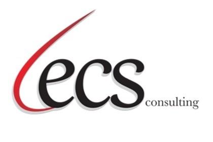 ECS Consulting